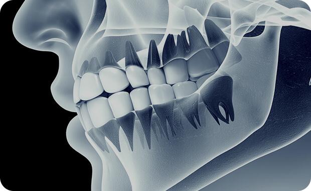 専門的な知識と技術を取得した歯科医師が担当